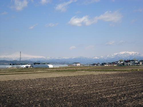 YAMAGATA-20110424-02.jpg